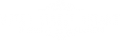 Water Street District Business Association Logo